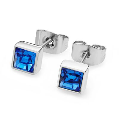 Tipperary Crystal Silver Sapphire Crystal Birthstone Earrings